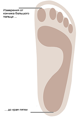 Measure from the tip of the longest toe to the outer edge of your 